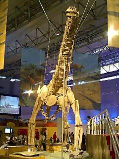 『恐竜大陸』