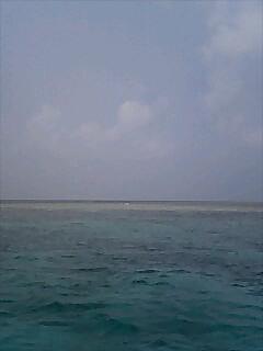 最後のダイビング