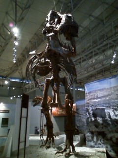 『恐竜2009 砂漠の奇跡!!』
