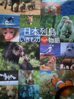 『日本列島 いきものたちの物語』